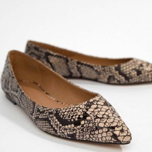 Latch Pointed Ballet Flats in snake